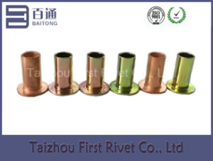 10X20mm Zinc/Copper Plated Flat Head Full Tubular Steel Rivet pictures & photos