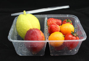Disposable 2 Compartmnet Microwave Plastic Food Container for Food Take Away pictures & photos