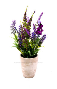 Artificial Flower Purple Lavender for Home and Wedding Decoration in Cement Pot pictures & photos