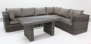 Sectional Outdoor Sofa Set with Garden Rattan Dining Table pictures & photos