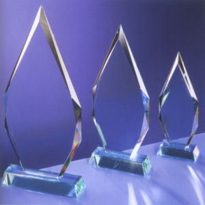 Customize Ad-217 Clear Laser Engraved Acrylic Trophy pictures & photos