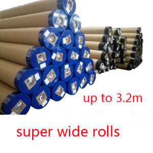 Super Wide Eco Solvent Polyester Inkjet Wall Canvas pictures & photos