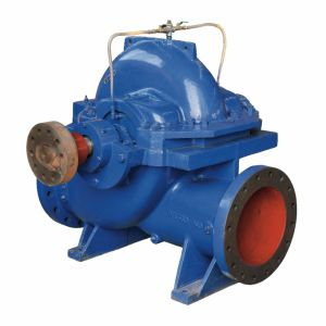 International Standard Industry Using End Suction Split Case Pump pictures & photos