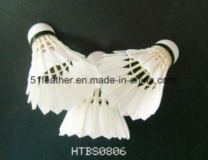 Professional Badminton Shuttlecocks/Goose Duck Feather Badminton Shuttlecocks for Training/Tournament pictures & photos