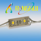 SMD High Bright LED Module (RH-F1245X2SMD-5050)