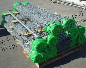 Electric Galvanized Diamond Chain Link Wire Mesh (HPZS-1010) pictures & photos