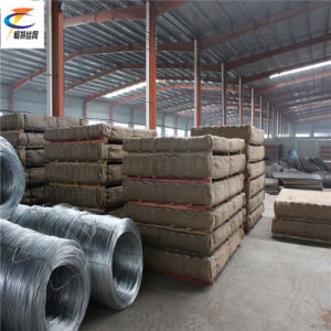 Satinless Steel Crimped Wire Mesh pictures & photos