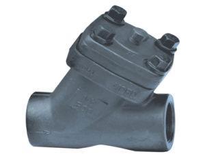 Y-Type Check Valves (Female Threaded) pictures & photos