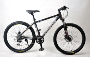 "Competitive Price 26"" *21speed Alloy Frame Mountain Bicycle (FP-MTB-A024) pictures & photos"