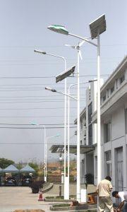 Green Energy 100W Wind Solar Hybrid Power Street Light pictures & photos