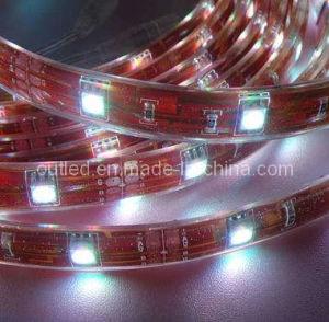 SMD LED Flex Strip (SCT-F-12)