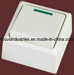Wall Surface Switch (9025)