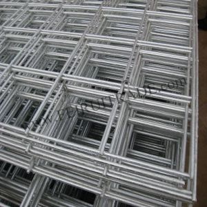 Galvanized Welded Wire Mesh Panels for Construction pictures & photos