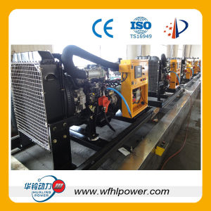 CE Certificated 10kw Natural Gas Generator Set (HL) pictures & photos