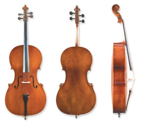 Cello Solidwood Top (N-C-20) pictures & photos