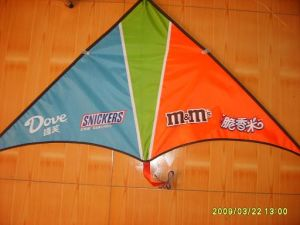 Polyester Delta Kite (ds3)