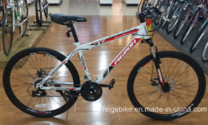 Competitive Price MTB Mountain Bicycle (FP-MTB-ST026) pictures & photos
