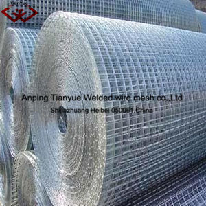 Welded Wire Mesh (Manufacturer) pictures & photos