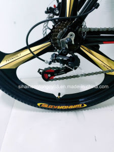 Sh-Sp110 26inch 3-Spoke Racing Bike pictures & photos
