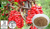 Pure Natural Schizandra Extract Schizandrol 2% ~ 98% HPLC pictures & photos