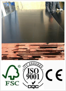 21mm Wood Plywood with Black Film for Concrete Usages pictures & photos