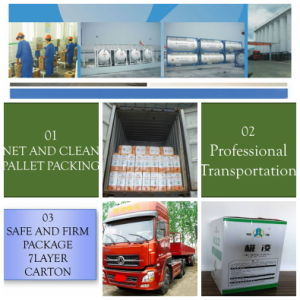 Good Price and High Purity Refrigerant Gas R12