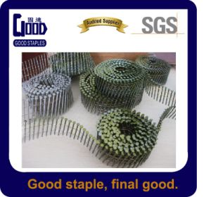 Painted or Polished Coil Nail for Pallet (3.1*80mm)