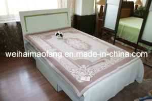 Woven Woolen 100% Wool Hotel Blanket (NMQ-WT009) pictures & photos