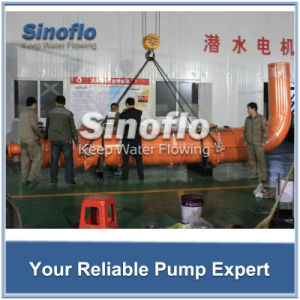 Mine Dewatering Submersible Sewage Water Pump pictures & photos