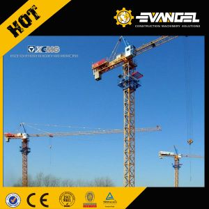 Types of Mini Tower Crane Zoomlion in India pictures & photos