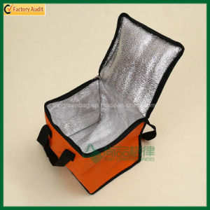 Eco Friendly Non Woven Ice Bag Lunch Cooler Bags (TP-CB409) pictures & photos