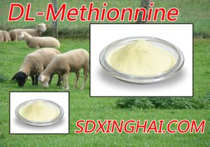 Factory Lower Price and High Quality of Methionine