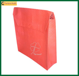 Hot/Cold Food Bags Pizza Bags (TP-PB014) pictures & photos