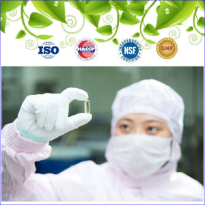 GMP Certified Antioxidant Supplement Grape Seed Extract Capsule pictures & photos