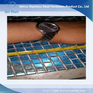 Crimped Wire Mesh for Washing Griddle pictures & photos