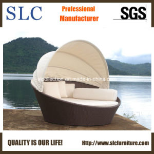 Rattan Daybed/Patio Furniture/Wicker Daybed (SC-B7020) pictures & photos