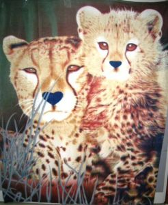 Newest Animal Printed Designs Wholesale Mink Blanket pictures & photos