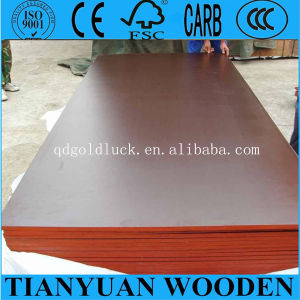 4*8ft Linyi Combi Core Black Film Faced Plywood pictures & photos