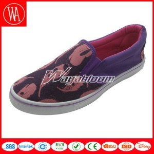 Comfort Canvas Leisure Shoes Flat Casual Shoes pictures & photos