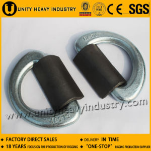 Steel D-Ring for Container Lashing pictures & photos