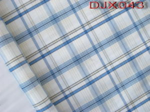 Yarn Dyed Shirting Fabric Djx043 pictures & photos