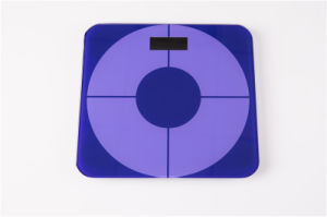 Digital Body Scale for Keeping Fit and Health with LCD Display