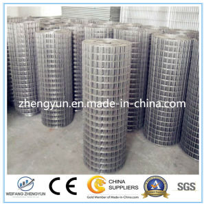 Low Price Welded Wire Mesh/ Galvanized Welded Wire Mesh pictures & photos