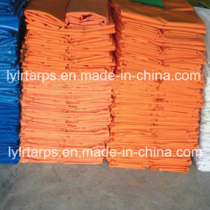 High Quality Plastic Tarpaulin, Poly Tarp, PE Tarps, Truck Tarpaulin Cover pictures & photos