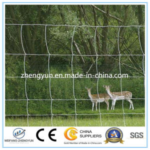 Hot Sales of Field Fence/Cattle Fence/Fixed Knot Fence pictures & photos
