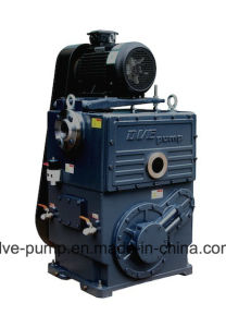 Coating Industry Rotary Piston Pump with High Quality Inlet Vacuum Filters pictures & photos
