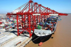 Cargo Consolidate Shipment for LCL/FCL Shipping pictures & photos