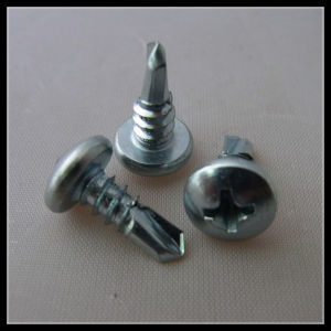 Self Drilling Screw pictures & photos