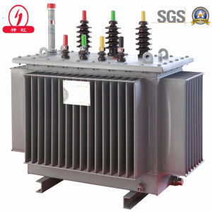 Oil Immersed Power Transformer pictures & photos