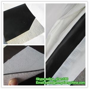 Composite Geotextile Geomembrane pictures & photos